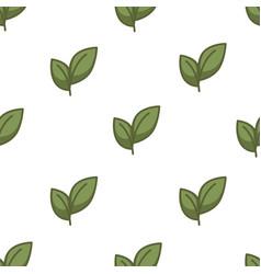 tea leaves seamless pattern plantation oriental vector image