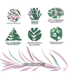 eco cosmetics logo set with leaves and flowers vector image