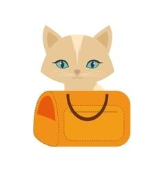 Kitten blue eyes yellow pet carrier traveling vector