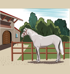 Horse tied to the fence vector
