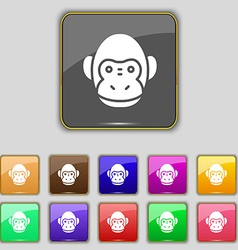 Monkey icon sign Set with eleven colored buttons vector