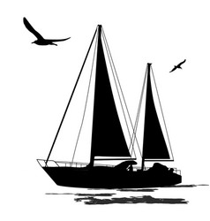 sailing boat silhouette with birds vector image