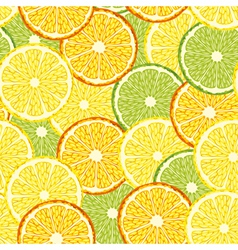 Seamless slices citrus fruit vector