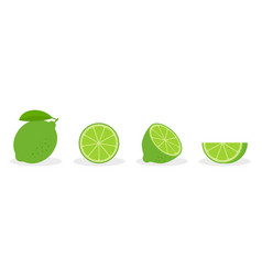 set lime - a whole lime half a piece and a vector image
