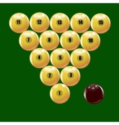 Set of balls to play Russian billiards vector image