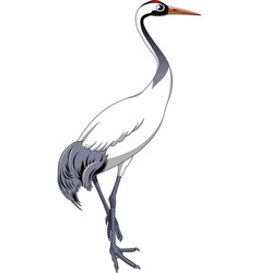 crane bird vector image vector image