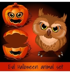 Open pumpkin and evil owl on a red background vector image vector image