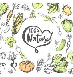 100 percent natural meal veggies vegetables set vector