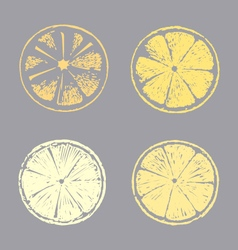 Abstract lemon slice Sketch hand drawn vector image