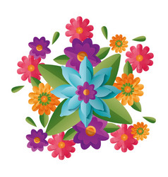 Arrangement floral flowers vector
