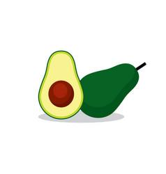 avocado fruit vector image