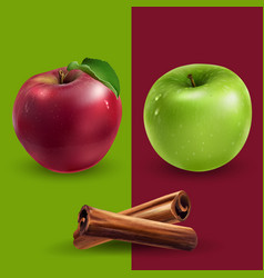 cinnamon green and red apples vector image