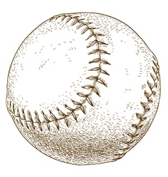 Engraving baseball ball vector