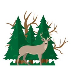 isolated with a deer in a fore vector image