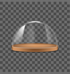 realistic detailed 3d glass dome container vector image