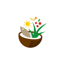 salad food bowl coconut fish leaf papaya turmeric vector image