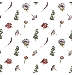 seamless pattern with hand drawn colored roses vector image