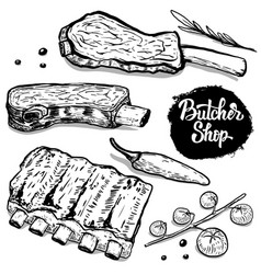 Set of hand drawn beef ribs with spices design vector