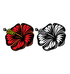 set two hibiscus flower - color vector image