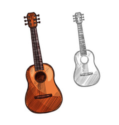 Sketch acoustic guitar musical instrument vector