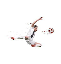 soccer player take a shooting ball vector image