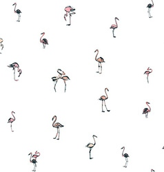 Tropical exotic birds flamingos summer seamless vector image