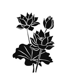 beautiful lotus flowers black silhouette isolated vector image