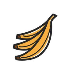 Bunch bananas vector