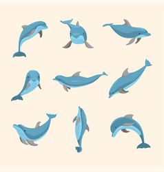 cartoon characters funny dolphin set vector image