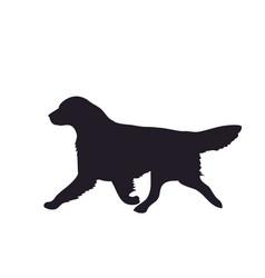 Dog runs silhouette vector