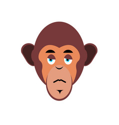 Monkey sad emoji marmoset unhappy emotion vector