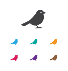 of zoology symbol on bird icon vector image