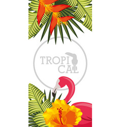 Tropical black background vector