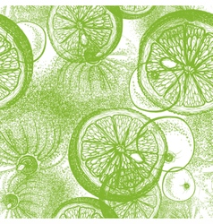 Seamless pattern with hand drawn lime vector image vector image