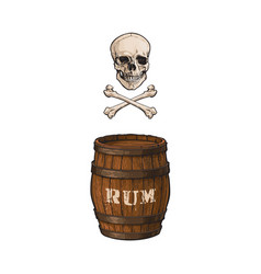 wooden rum barrel skull cross bones set vector image vector image