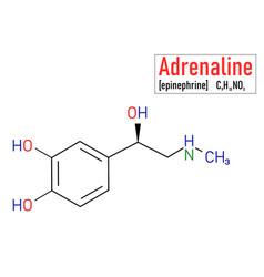 Adrenaline molecule skeletal formula vector