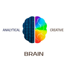 Brain icon left brain part - analytical right vector