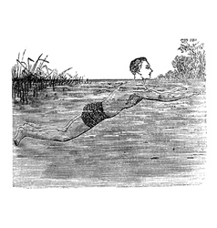 Breaststroke Position vintage engraved vector image