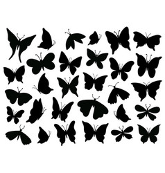 papillon silhouette mariposa butterfly wing moth vector image