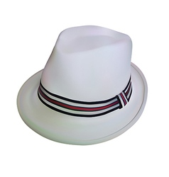 white stylish hat vector image