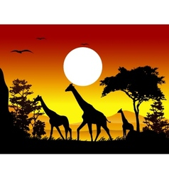 giraffe silhouettes with landscape background vector image vector image