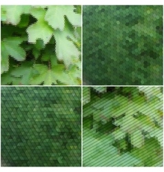 Green leaves texture Collection of abstract vector image vector image