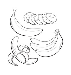 Sliced peeled singl and bunch of three ripe vector