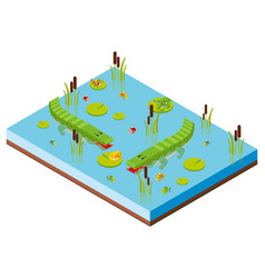 3d design for pond scene with two crocodiles vector image