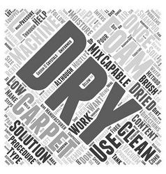 Dry Foam Carpet Cleaning Word Cloud Concept vector