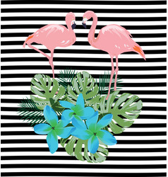 flamingos flowers vector image