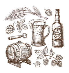 hand drawn beer mug barrel wheat and malts ears vector image