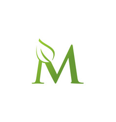 letter m leaf nature logo vector image
