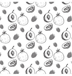 seamless pattern with the image of fruit vector image