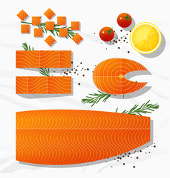 Set of fresh raw salmon fish and spices vector